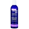 Shiny Silver Ultra Shampoo 355ml - Click for more info