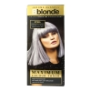 Jerome Russell Bblonde - STEEL Toner 75ml - Click for more info